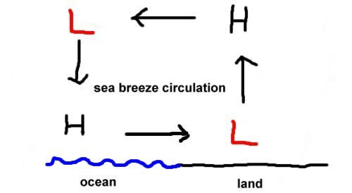 Worksheets Sea Breeze Diagram the sea breeze diagram below shows a circulation